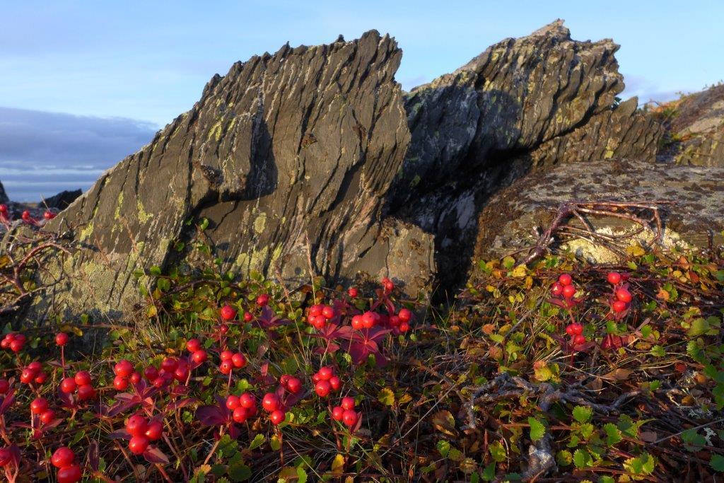 Autumn in Berlevåg